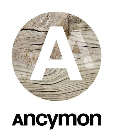 http://www.resetpoint.pl/files/gimgs/12_ancymonlogook.jpg